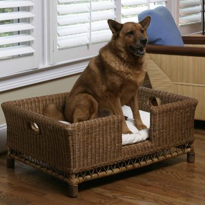 kea the reading dog napa home and garden rattan large dog bed basket with cushionjpg
