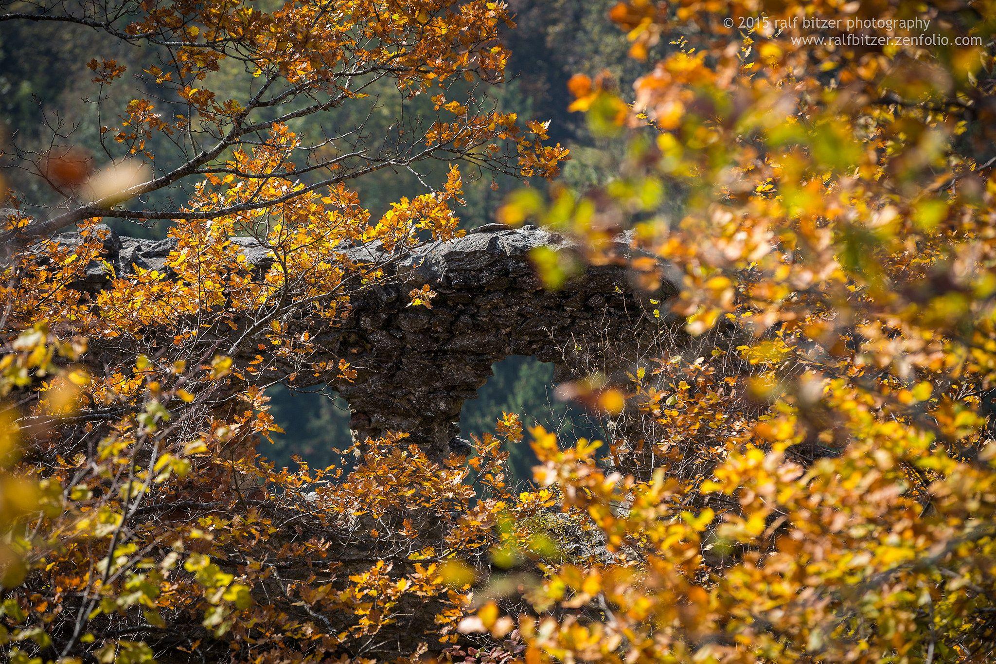 https://flic.kr/p/zWJHEw | The eyes of the castle | Mauerreste der Burgruine Hohenkrähen umrahmt von herbstlich gefärbten Bäumen, an einem traumhafter Oktober Tag.