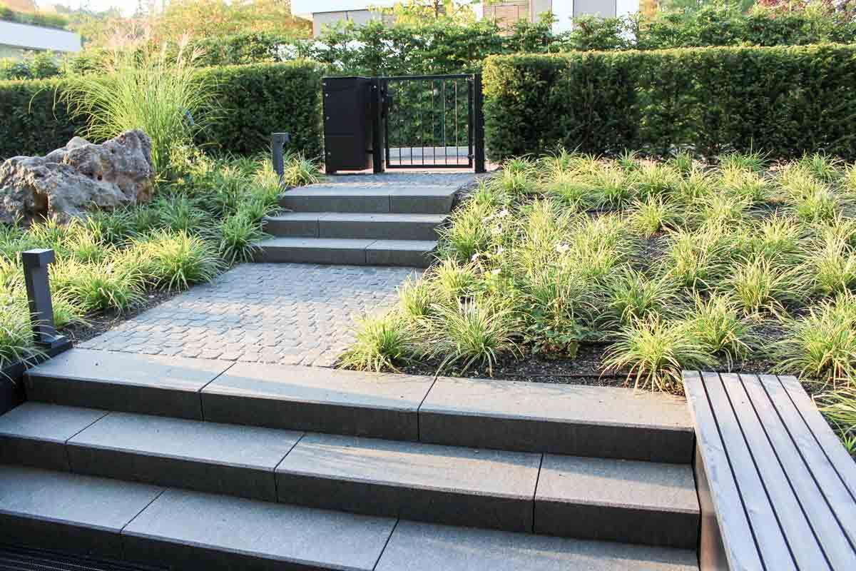 Dark basalt steps and evergreen ornamental grass (Carex morrowii 'Icedance') create a calm and reduced  atmosphere