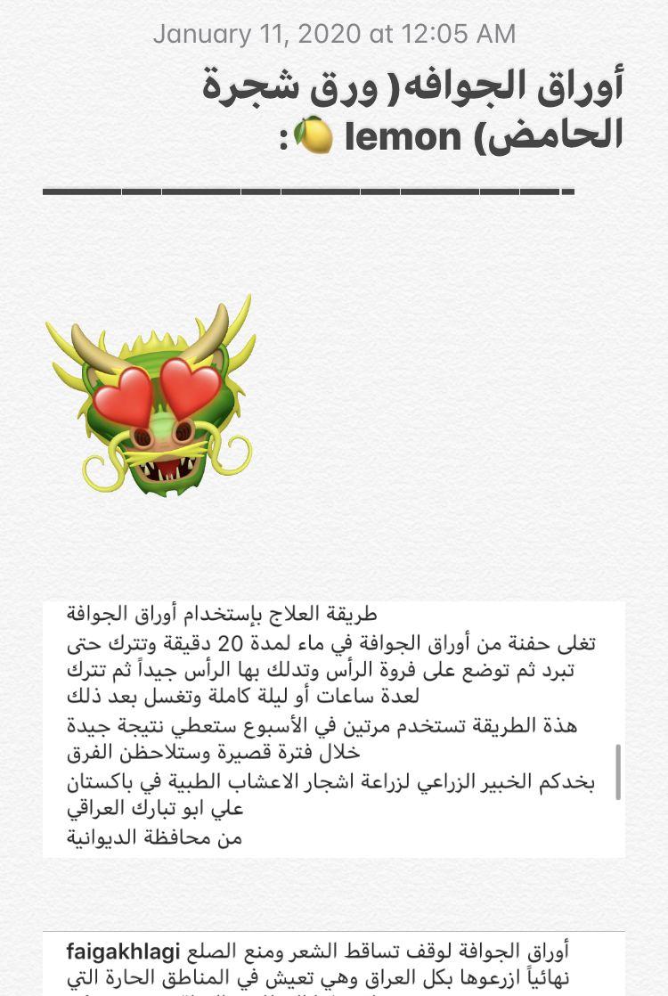 أوراق الجوافة للشعر January 11 Abs January