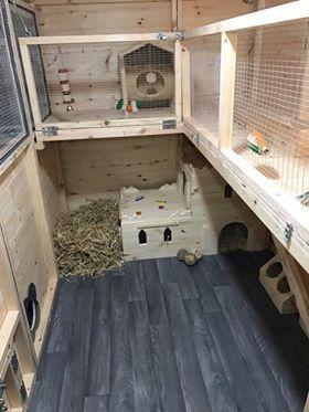 Inside Huge Houses inside of a huge rabbit shed. handmadeboyles pet housing