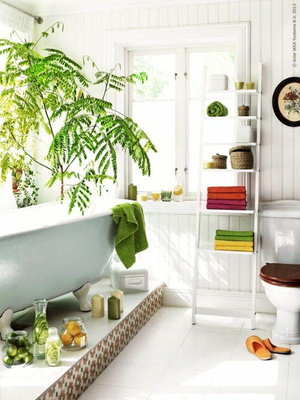wohnideen positive energie badezimmer pflanzen Zimmerpflanzen - wohnideen von feng shui