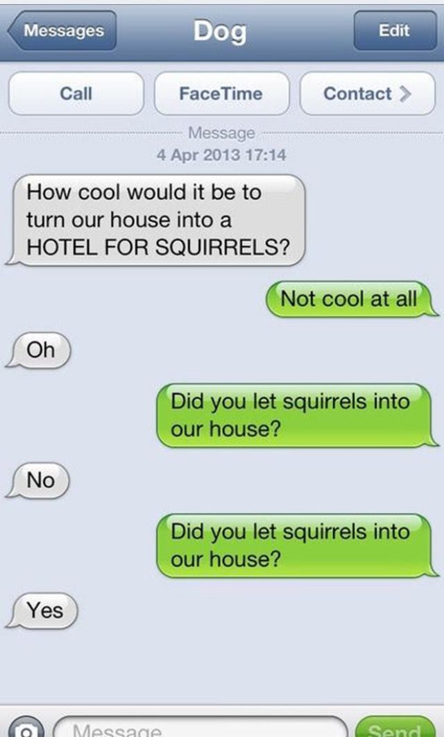 Pin By Peggy Woodrum On Dog Text Funny Dog Texts Funny Text