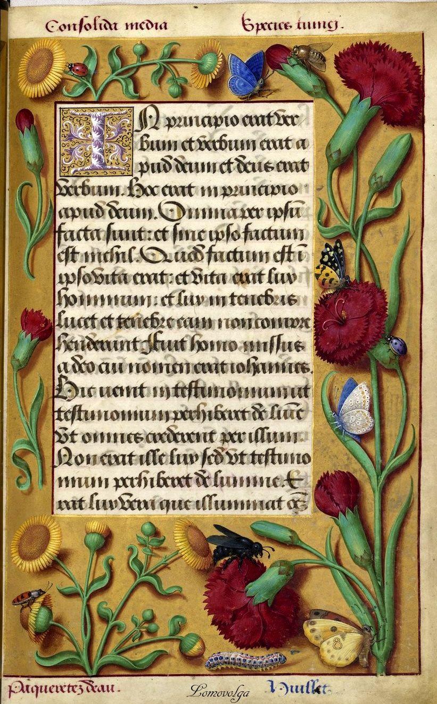 Grandes Heures D Anne De Bretagne Manuscripts Detailed