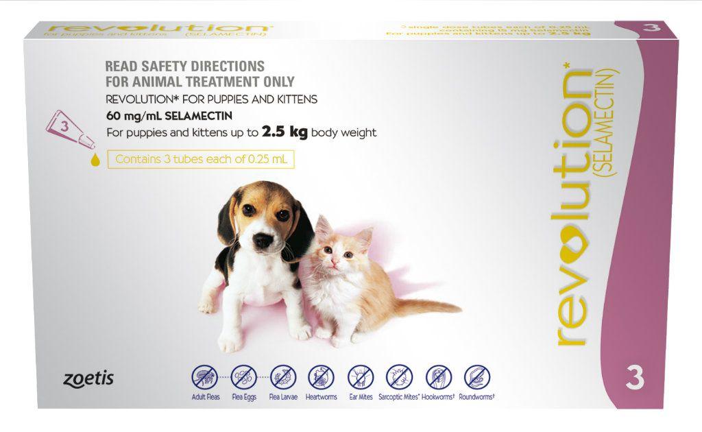 Https Www Nettopet Com Au Cat Html With Images Cat Fleas Puppies Cat Pet Supplies