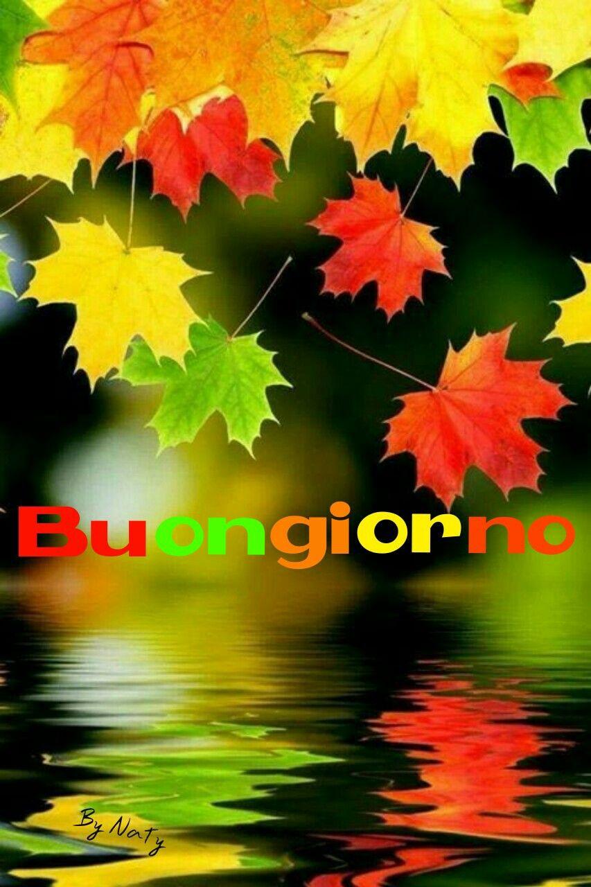 Pin By Natalia On Buongiorno Autumn Leaves Background Fall Wallpaper Beautiful Nature