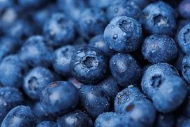 We source these delicious ripe blueberries straight from Argentina where Whole Planet Foundation funds microlending projects!