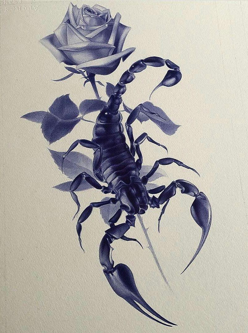 картинки тату скорпиона и цветка песчаным дюнам барханам