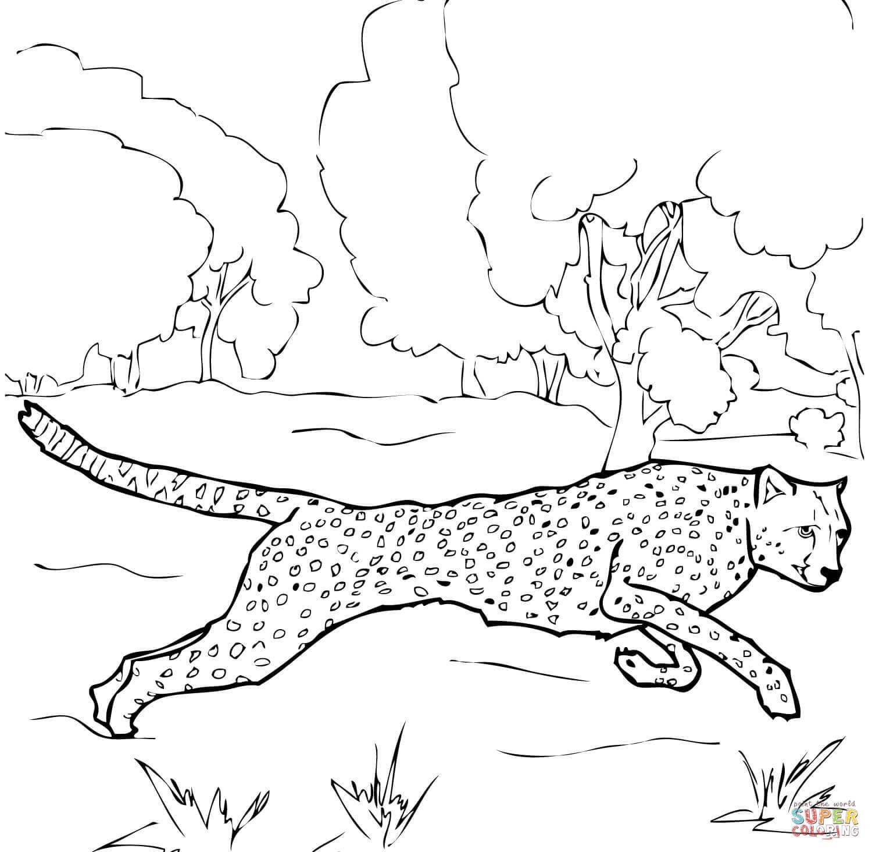 gepard ausmalbilder 02 | Mandala | Pinterest | Ausmalbilder ...