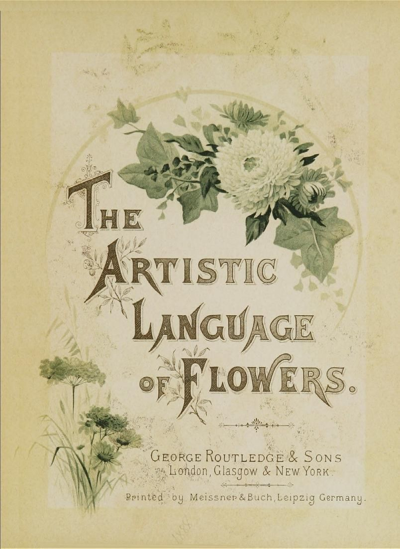 The Artistic Language Of Flowers I Love These Vintage Online
