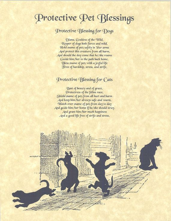 Book of Shadows page A Spell for the by OpentheBookofShadows