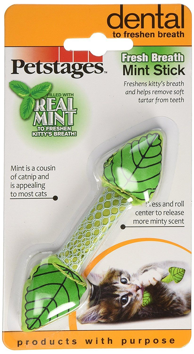Petstages Fresh Breath Mint Stick 335 Find Out More About The Great Product At The Image Link This Is An Affiliate Link Petstages Cat Health Fresh Breath
