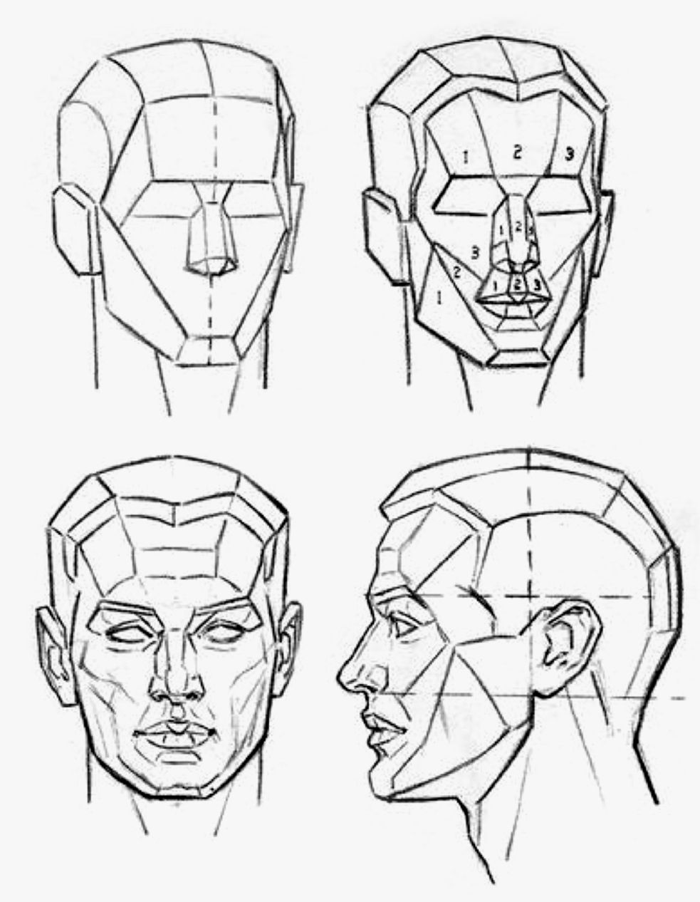 Andrew Loomis Drawing The Head Hands Sanat Pinterest
