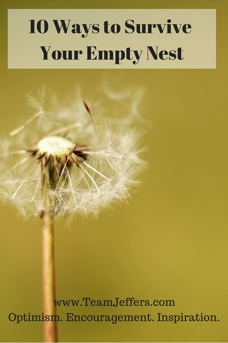 The joys of an empty nest empty nest and empty nest syndrome survival guide 10 ways to cope with an empty nest fandeluxe Ebook collections