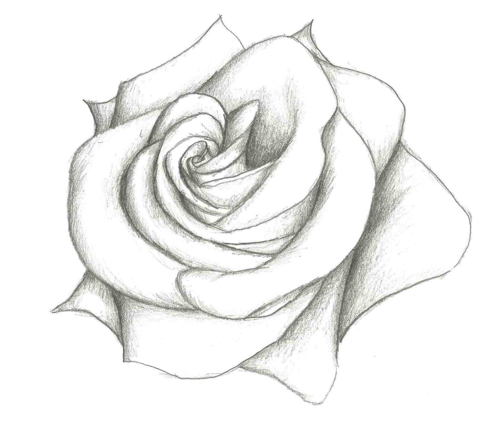 33 Lovely Art Sketches Easy Simple Drawings Ideas Plenty Decor