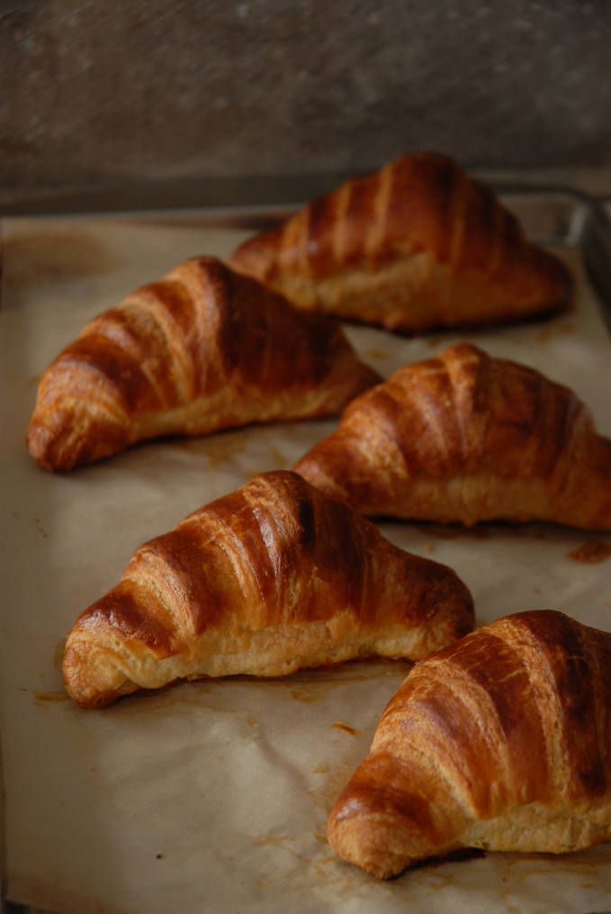 Homemade French croissants on a baking sheet