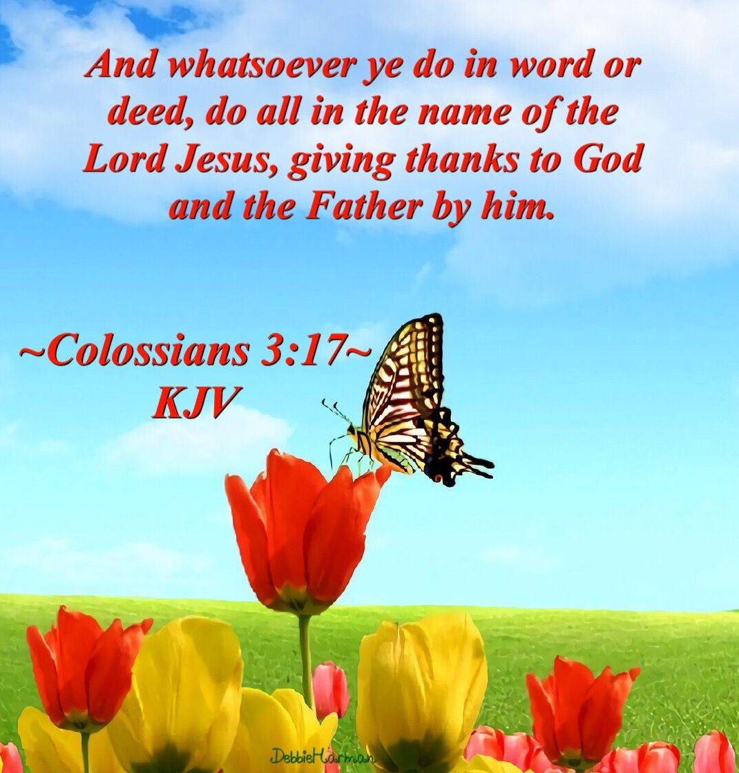 Colossians 3:17~KJV. And whatsoever ye do in word or deed, do all in ...