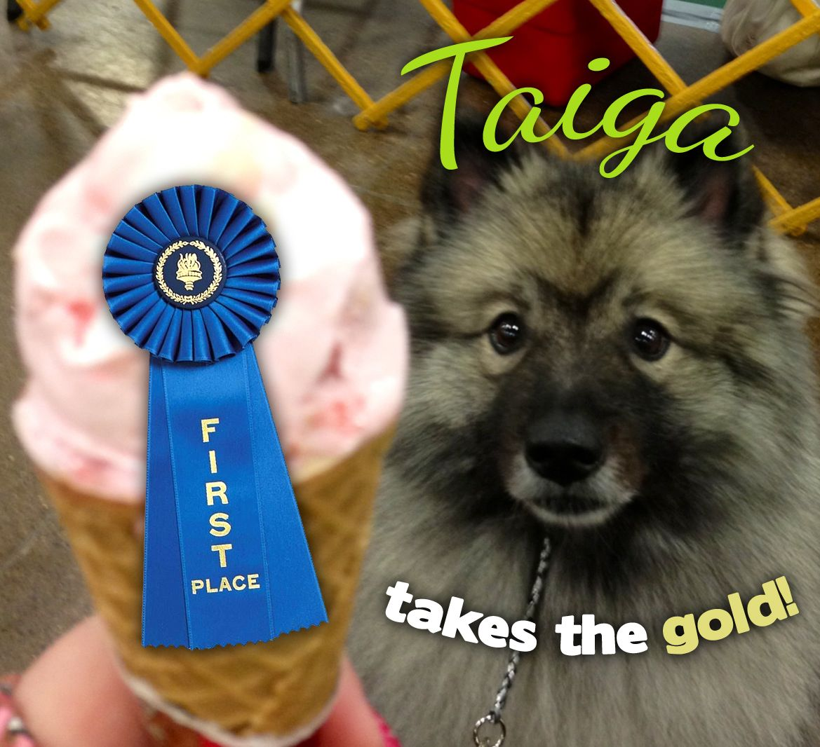 Winner of our Dog Days of Summer photo contest! Entrant