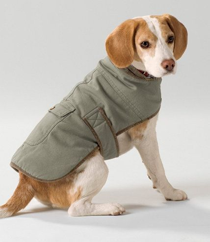 Dog Coats-so many choices!  Field Coat for Dogs: Dog Jackets | Free Shipping at L.L.Bean
