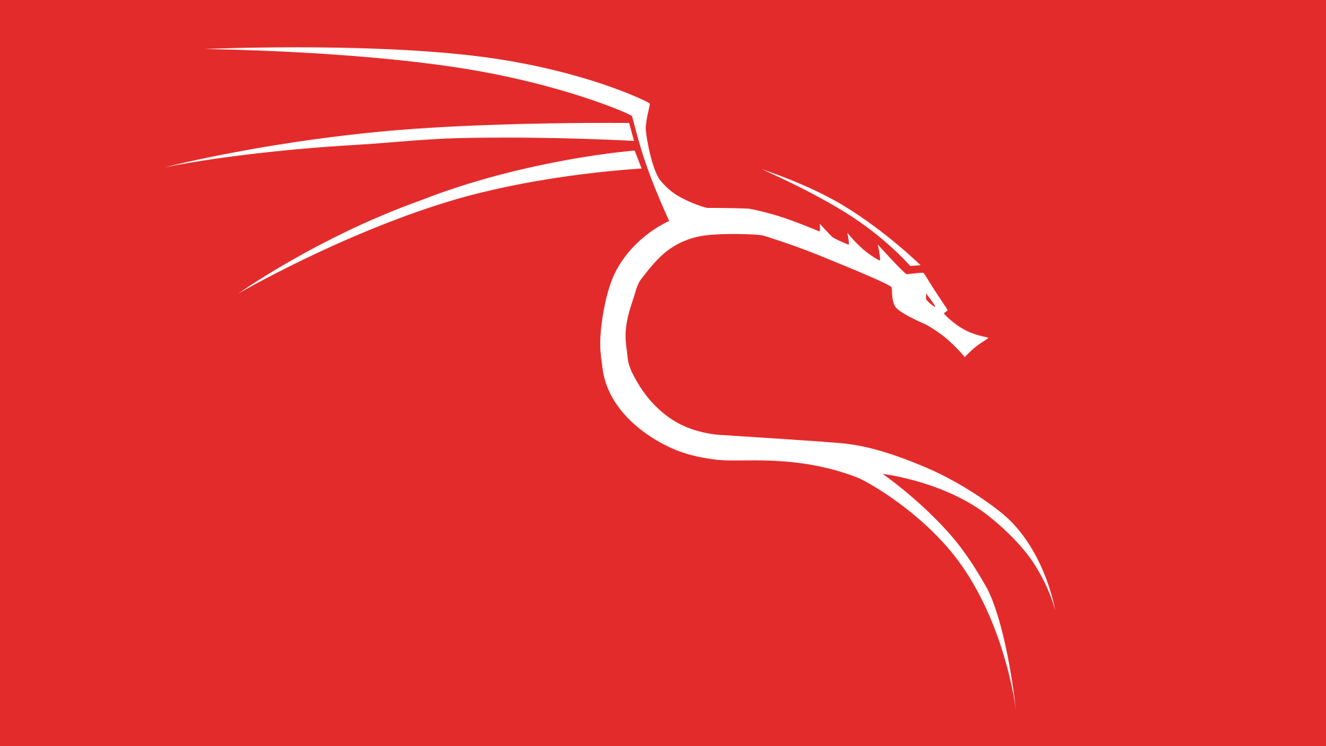 The Red White Dragon Kali Linux Dragon White Dragon Dragon Linux