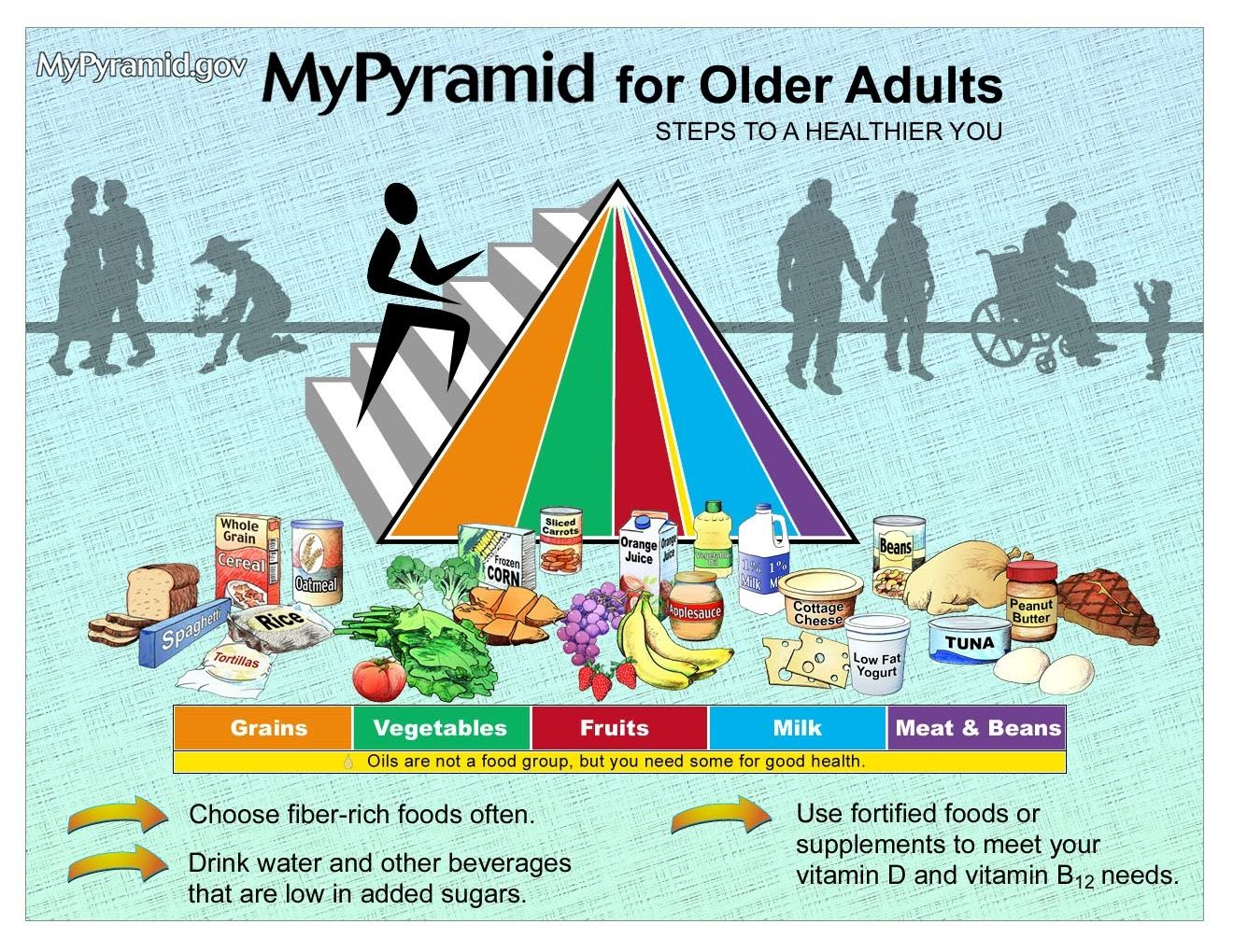 Food Pyramids For Older Adults Ourtary Needs Change