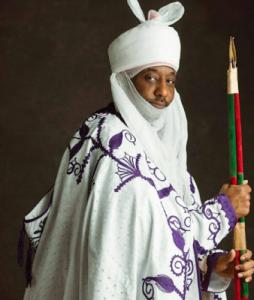 Image result for Emir Sanusi II