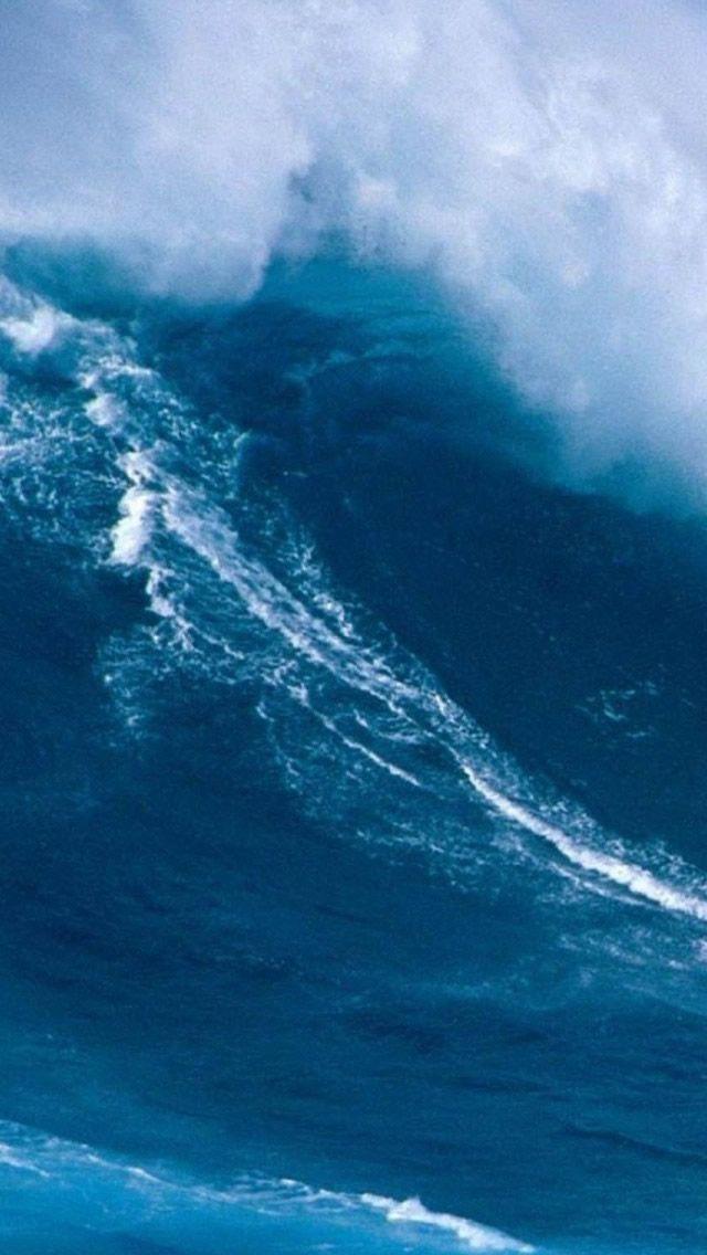 Hawaiian Surfing Iphone Wallpapers Wallpaper Iphone 5s Wallpaper Aesthetic Backgrounds