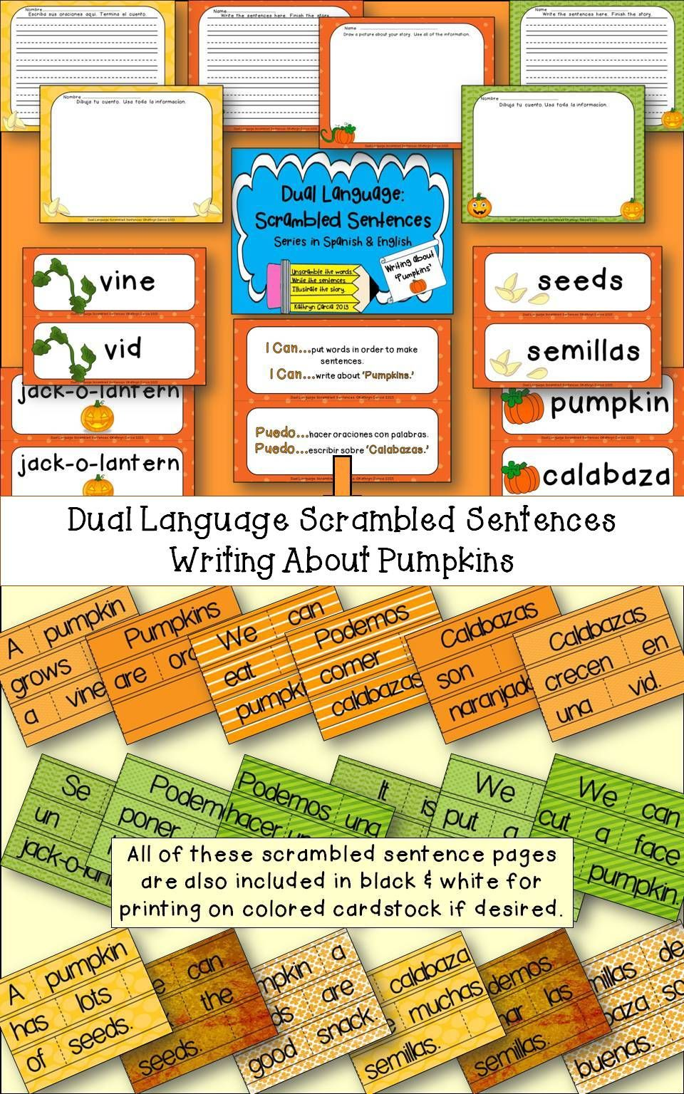 Spanish scrambled sentences for dual language bilingual calabazas pumpkins
