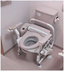 Electric Raised Toilet Seat 1 With Images Bidet Toilet Seat