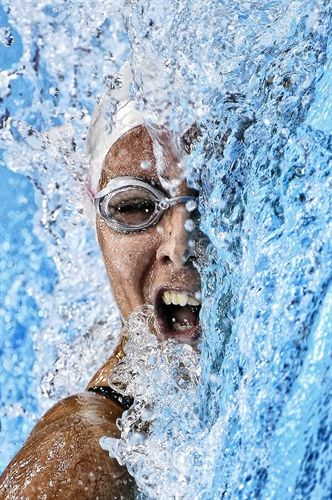 Winners Galleries Swimming Photography Swimming Pictures Sport Photography