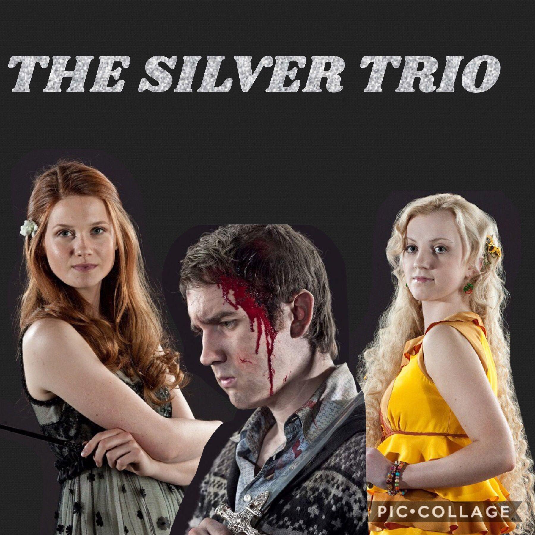 The Silver Trio Harry Potter Harry Potter Memes Harry Potter Headcannons
