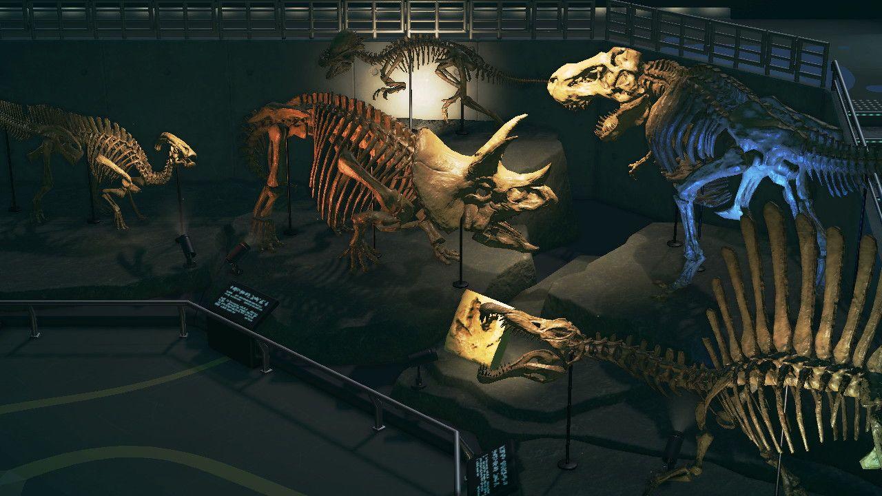 森 化石 あつ