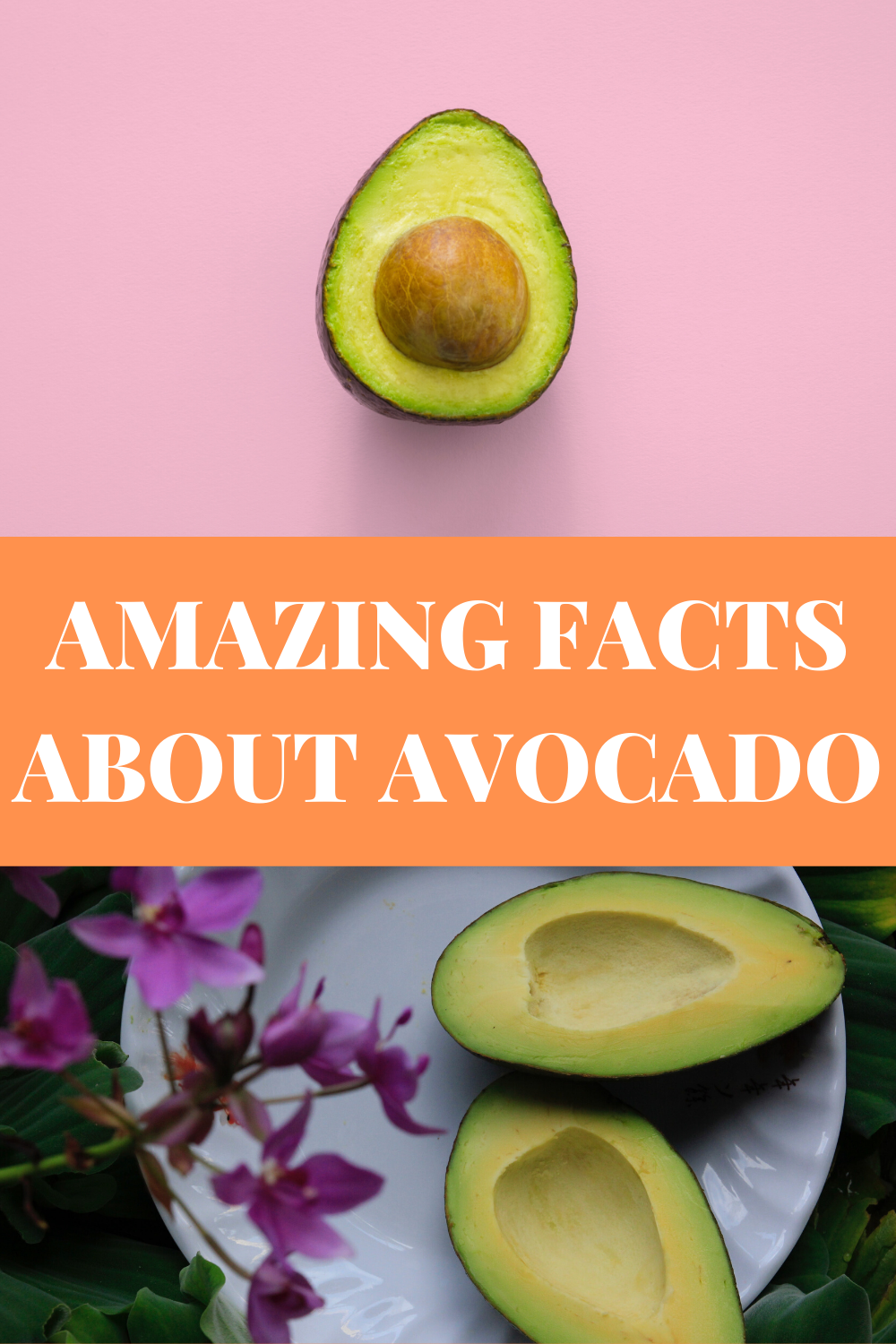 18 Health Benefits of Avocado in 2020 (With images
