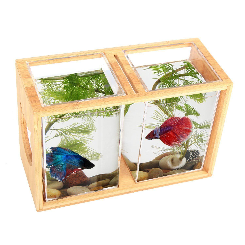 Fish Bowls Bamboo Segarty Unique Cool Design Small Square Glass Vase