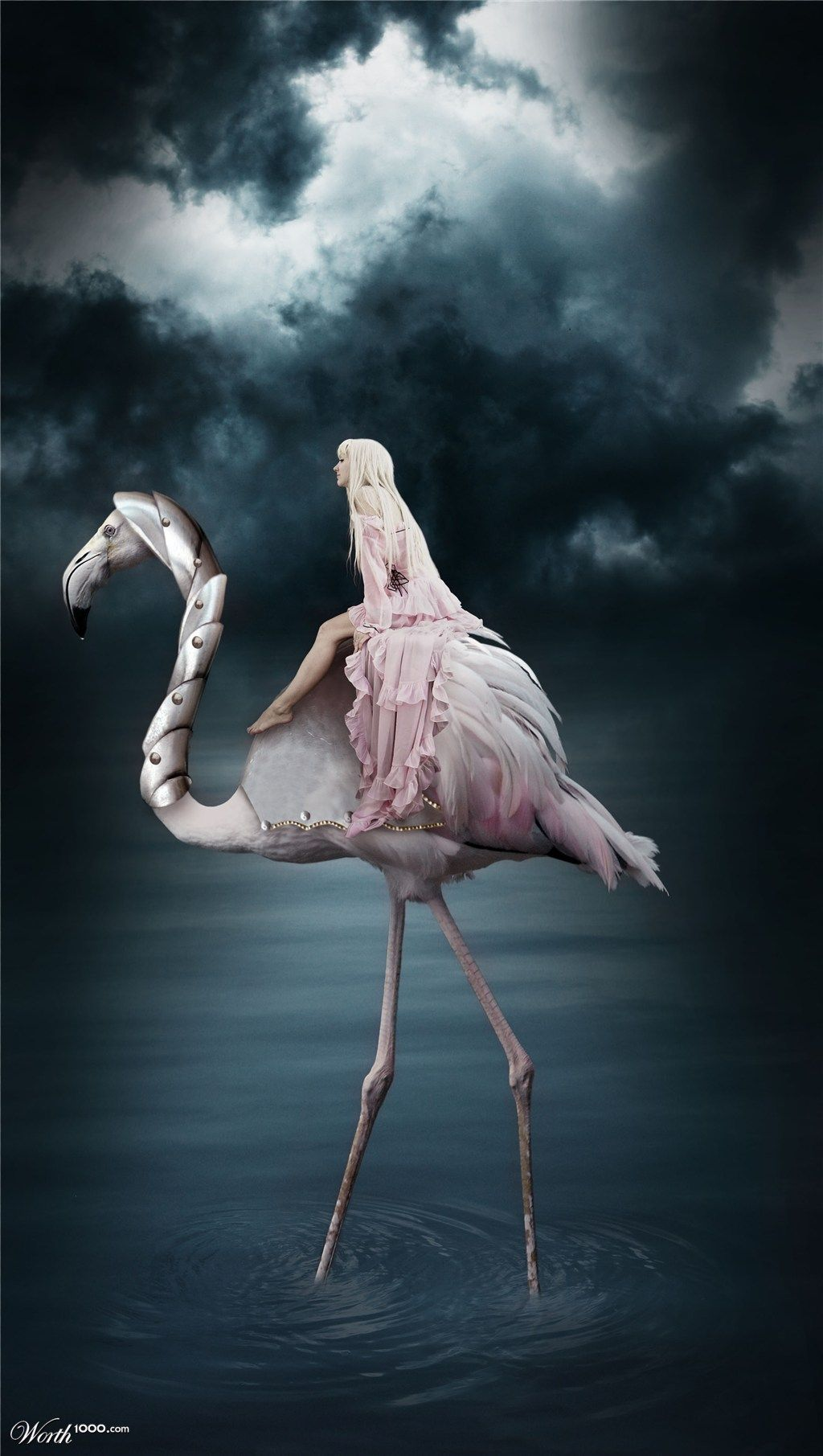 Flamingo Rider - Worth1000 Contests