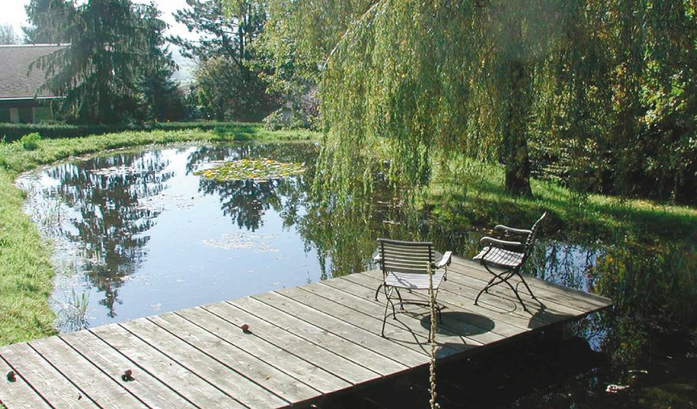 garden pond this would be perfect! Love a pond pool! Pinterest