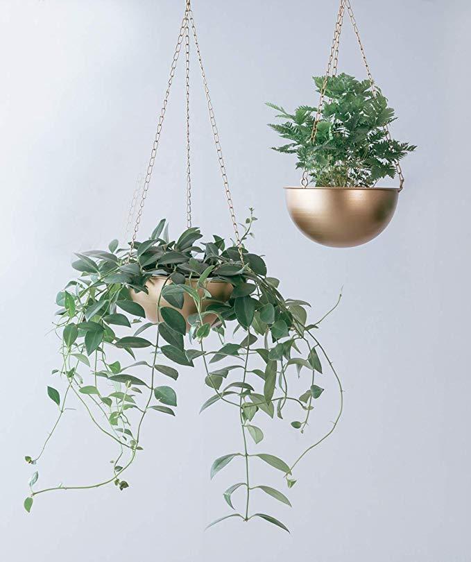 Amazon Com Riseon Set Of 2 Boho Brass Gold Bowl Shaped Plant Hanger Metal Round Hanging Planter Flower Plant Pot Modern Modern Planters Plants Plant Hanger