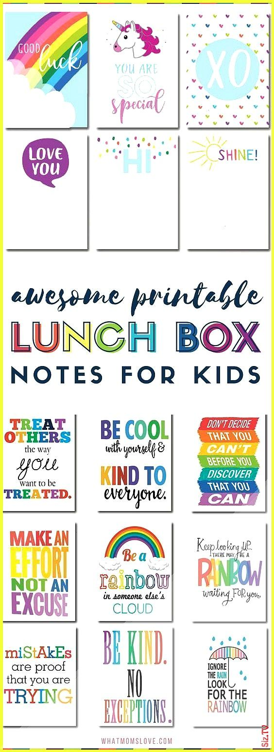 Best Bento Boxes Supplies 038 Tools To Take Your School Lunches From Boring To Blast-Off The Best B