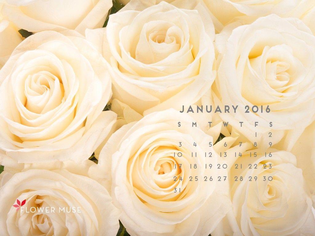 January 2016 Calendar - Download for free on Flower Muse blog: http://www.flowermuse.com/blog/january-2016-calendar/