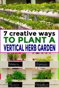7 Creative Ways To Plant A Vertical Herb Garden - Gardening @ From House To Home