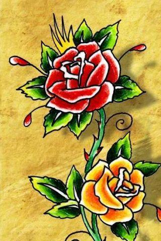 Full rosas