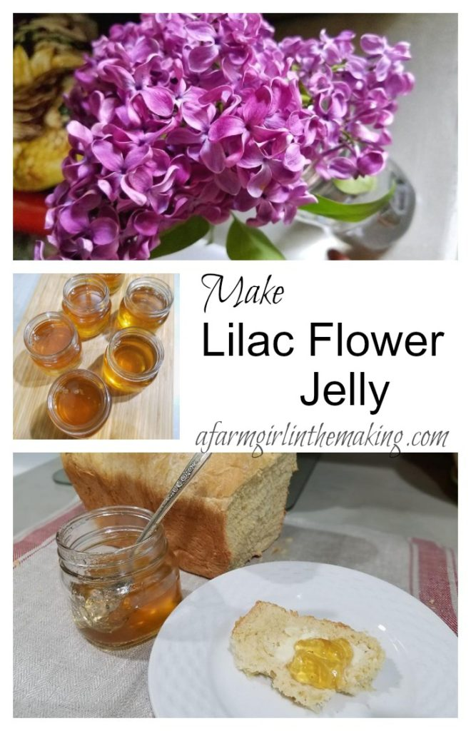 Lilac Flower Jelly A Delightful Floral Jelly A Farm Girl In The Making Recipe In 2020 Jelly Recipes Lilac Flowers Food