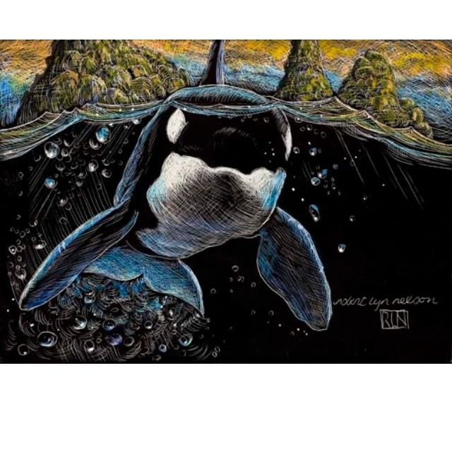 Orca Portrait by ROBERT LYN NELSON - etching 2004 A tiny 5x7 inches.  @robertlynnelson.com  #orca #sealife #killerwhales #art #handmade #etching