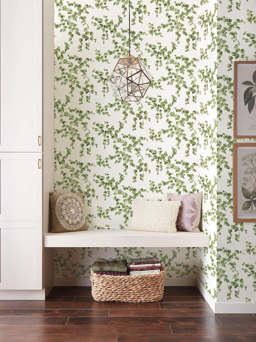 Simply Farmhouse Creeping Fig Vine Wallpaper Green in