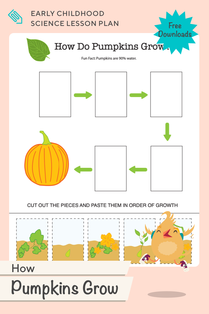 How Pumpkins Grow Lesson Plan Education Com Fun Educational Activities How To Plan Science Lesson Plans [ 1102 x 735 Pixel ]