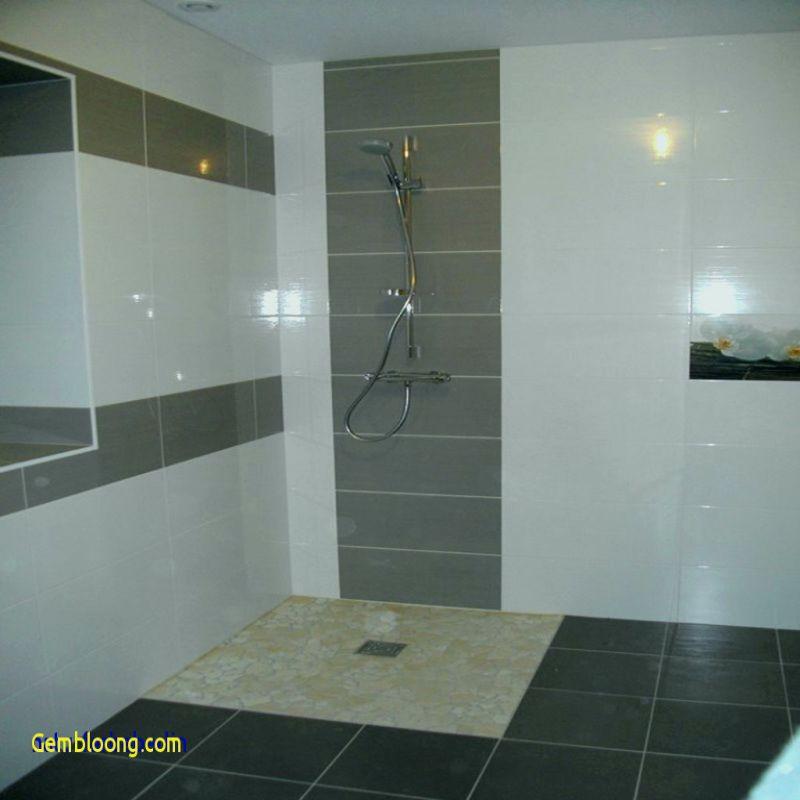 douche italienne prix le meilleur de modele de salle de