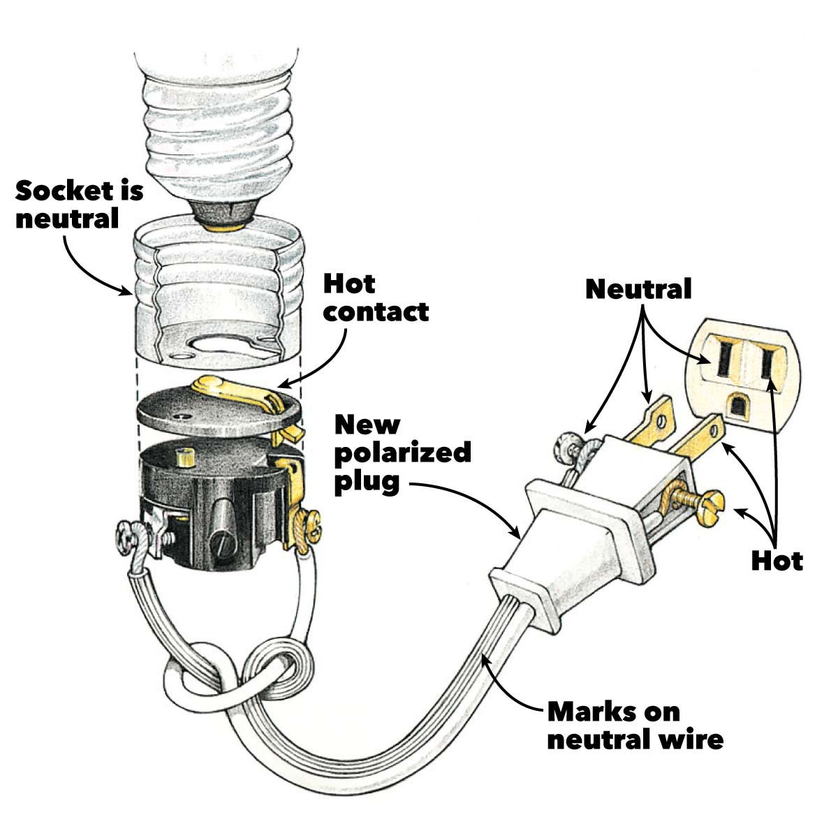 Wiring A Plug Replacing A Plug And Rewiring Electronics Wiring A Plug Electrical Wiring Home Electrical Wiring