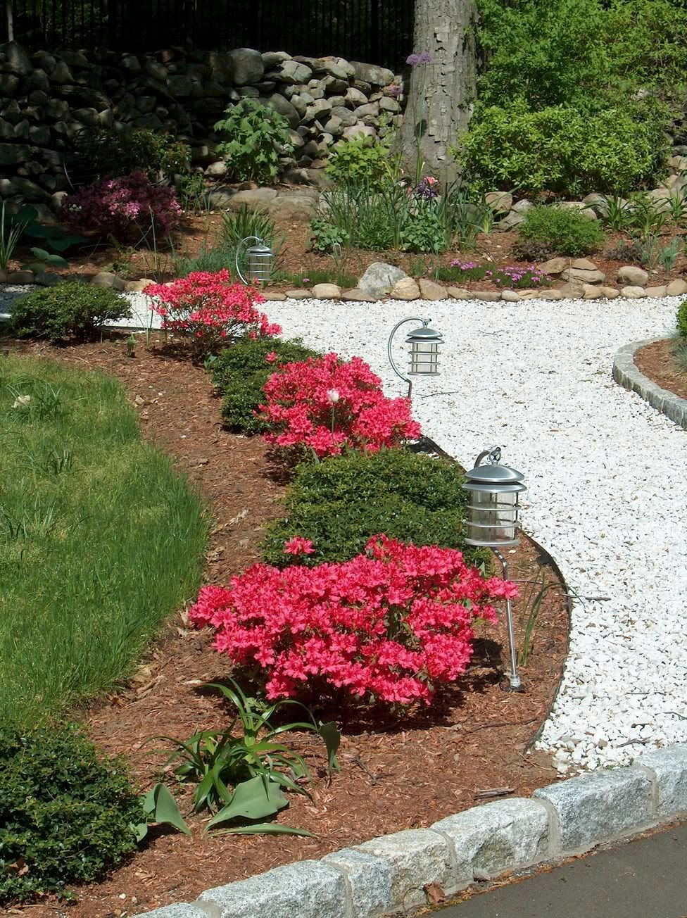 Pin On Front Yard Landscaping 400 x 300