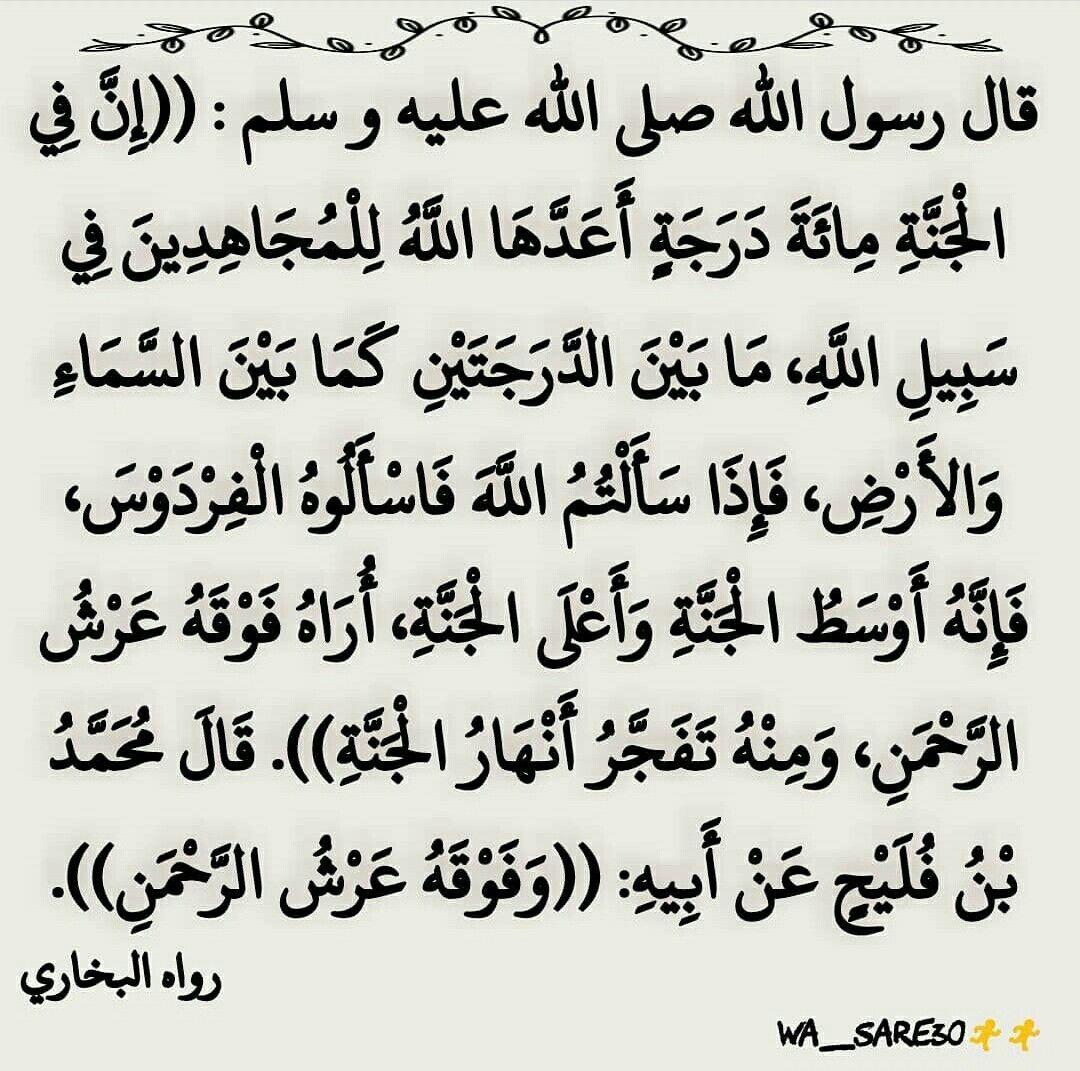 إن في الجنة مائة درجة أعدها الله للمجاهدين في سبيل الله Instagram Photo And Video Photo