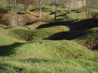 Photo Of The Verdun Battleground As Seen Today It Attests To The Ferocity Of The Fighting In And Around Verdun Fance From January 1916 Geschiedenis Monumenten